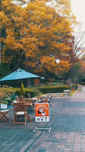 Machida park