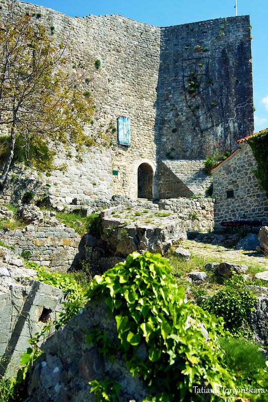 Вид на фрагмент Цитадели с центральным входом