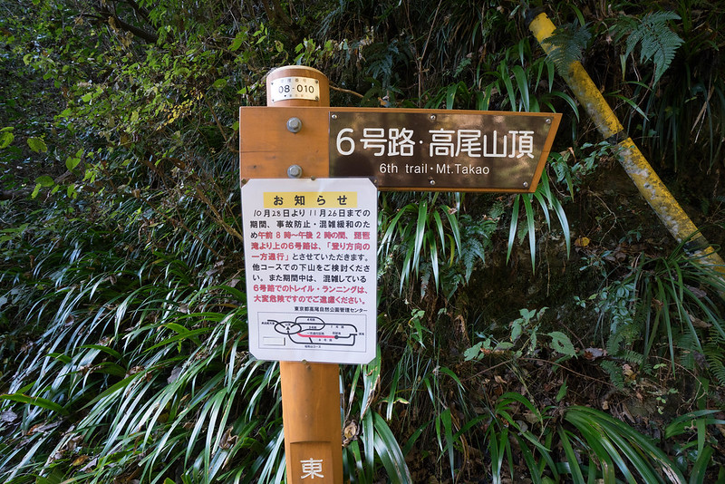 20171119_高尾山_0053.jpg