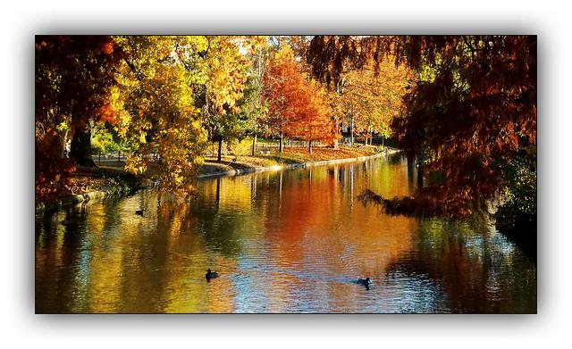 Ballade automnale (Autumn walk) 6