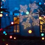 24028624297 2017 Christmas Tree Lighting Ceremony