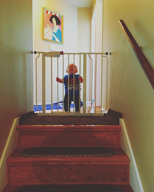 Baby jail! He's very talented at climbing UP the stairs but still needs practice going down. 😅