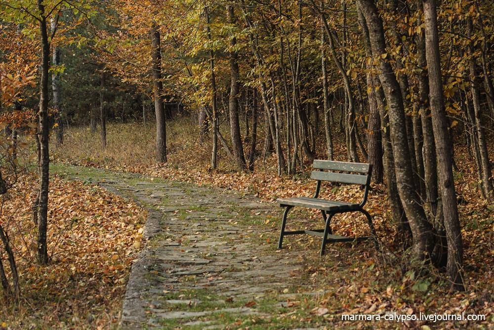 Bolu-nov2011-087c