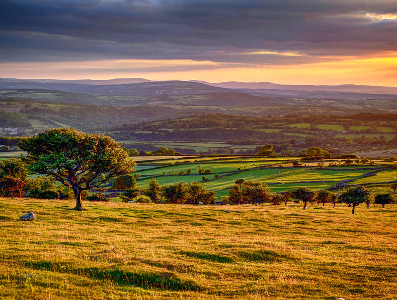 Early evening on Dartmoor. Credit Baz Richardson, flickr