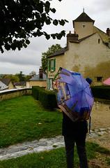 2017 Van Gogh Auvers IMG_2242