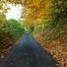 B Road to Shoreham Kent