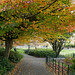 more autumness