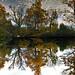 Keydell Duck Pond