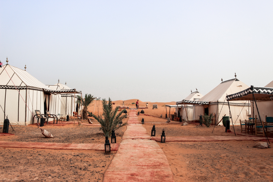 Sahara desert kisses,vera-14