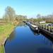 Chelmer Navigation at Sandford Lock near Chelmsford, Essex