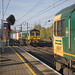 66522 at Ipswich