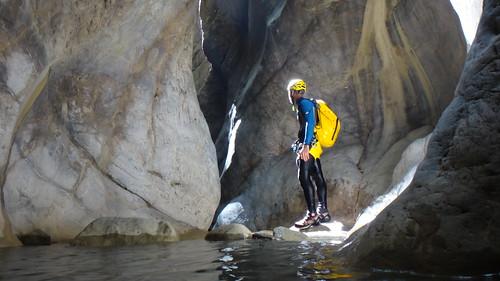 Harcove kanyonu