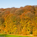 Autumn in the Cotswolds 1