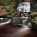 Tigers Clough by Pete Rowbottom, Wigan, UK