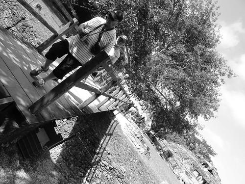 Palenque No. 11 OP 77