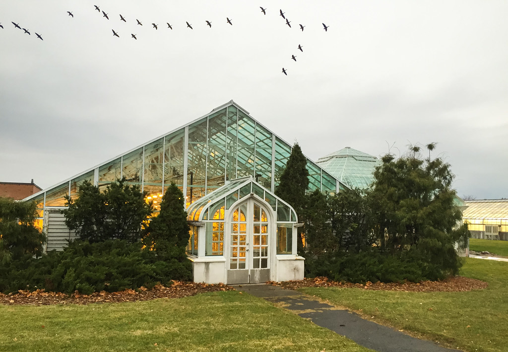 Hotels Close To Carleton University Ottawa Ontario