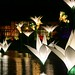 RHS Wisley Xmas lights
