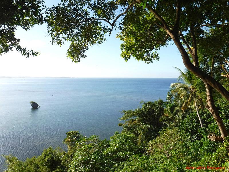 Serene morning scenery at Nature's Eye Resort