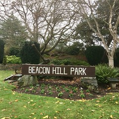 Beacon Hill Park (or Autumn in Lorien)