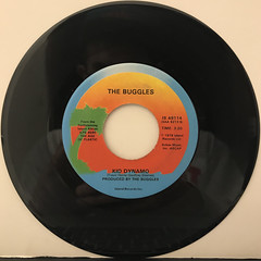 THE BUGGLES:VIDEO KILLED THE RADIO STAR(RECORD SIDE-B)