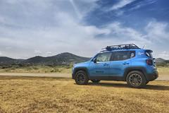 Black Rhino Warlord on Jeep Renegade