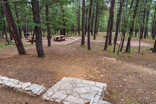 arizona coconinonationalforest forestservice knolllakecampground mogollonrimrangerdistrict pentaxk1 usfs campground camping forest outdoors summer happyjack unitedstates