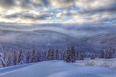 Kam o víkendu na běžky: sněhu už je na českých horách dostatek