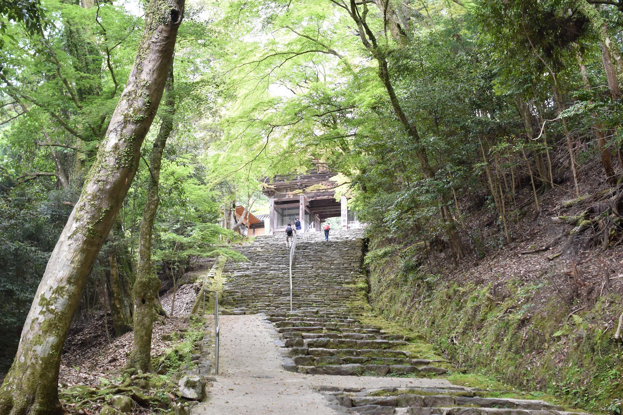 神護寺(Jingoji-temple)