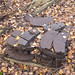 Abandoned Brake Pads
