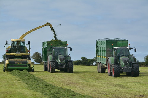 Krone Big X 630 SPFH filling a Broughan Engineering Mega HiSpeed Trailer drawn by a Fendt 724 Vario Tractor