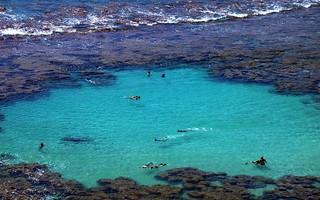 Oahu_Haunama Bay_DSCN0946_715