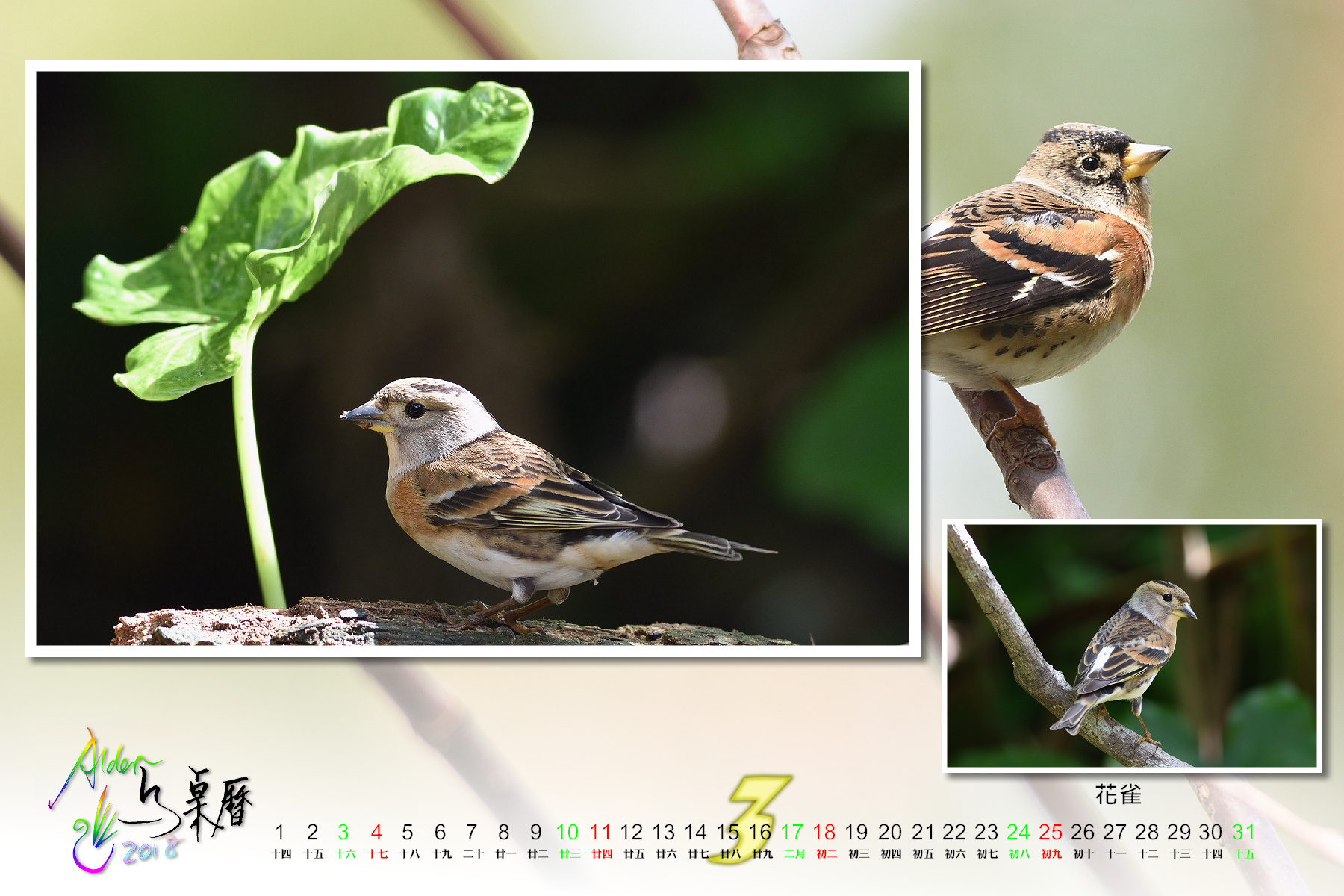 Calendar2018-002_03