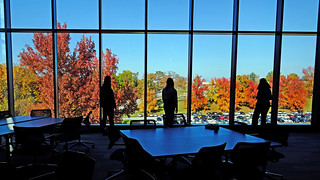 Eye on UMSL:  Colorful view:  Nov. 15, 2017