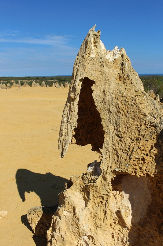 Pinnacles04