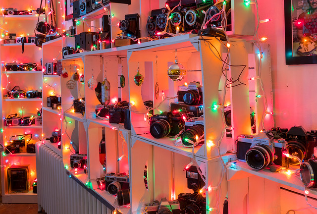 Christmas Lights & Cameras