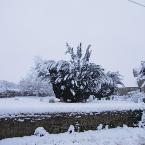 Snow in Cumnor