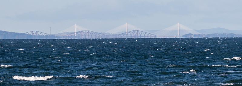 """The Bridges"" 139a_310"