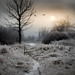 fantasy land... by iwona_podlasinska