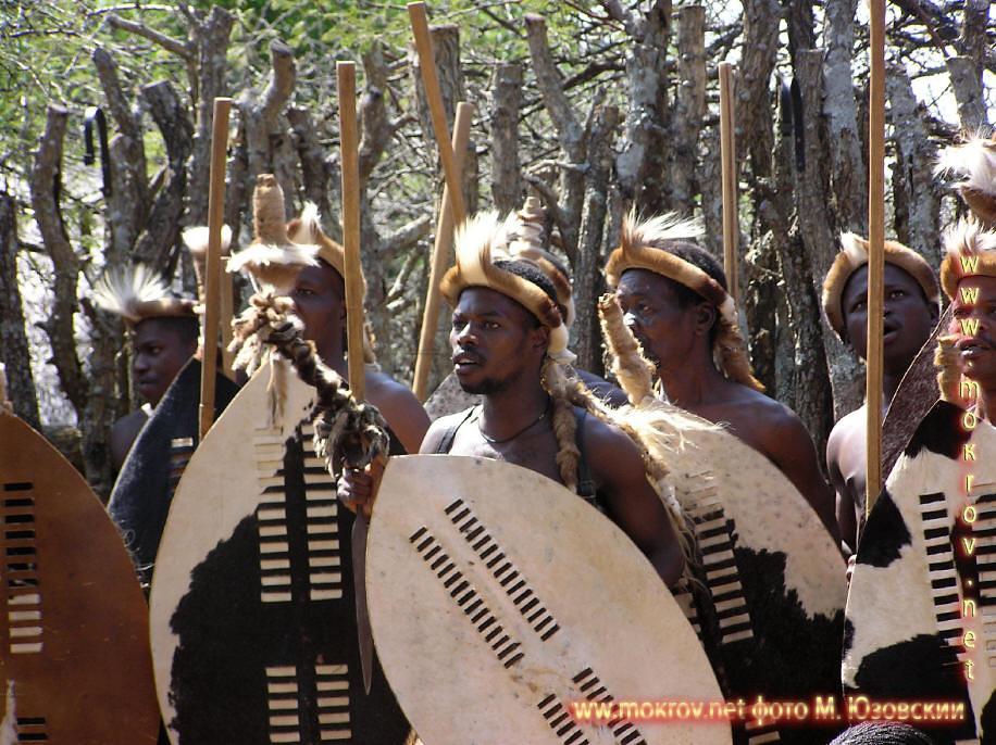 Национальный Парк Крюгера ЮАР  (5)