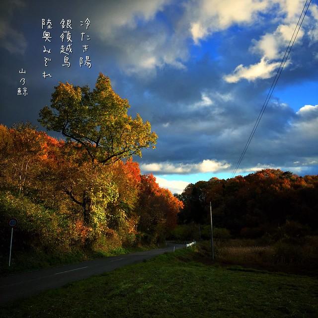 Photo:冷たき陽 銀嶺越鳥 陸奥みぞれ[山乃鯨] #haiku #photohaiku #poetry #winter #micropoetry #冬 #フォト俳句 #Japanese #写真俳句 #snapseed #jhaiku #mpy #vss #3lines #poem By Atsushi Boulder