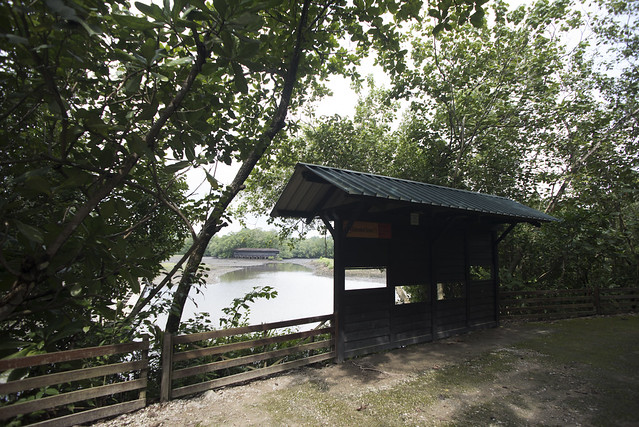 Sungei Buloh Wetland Reserve: Bird Hide