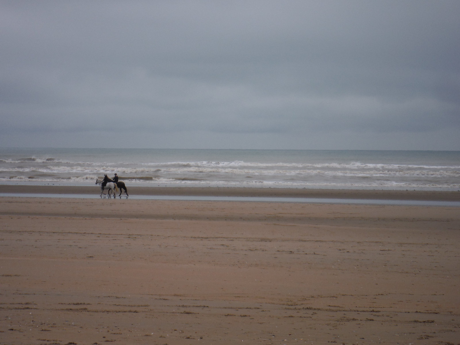 Horse Riders on Camber Sands SWC 154 - Rye to Dungeness and Lydd-on-Sea or Lydd or Circular