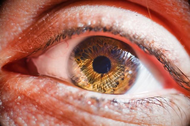 Nikkor 105 mm F4 Micro AIS : Test shots on Elodie's eyes : Nikon D810