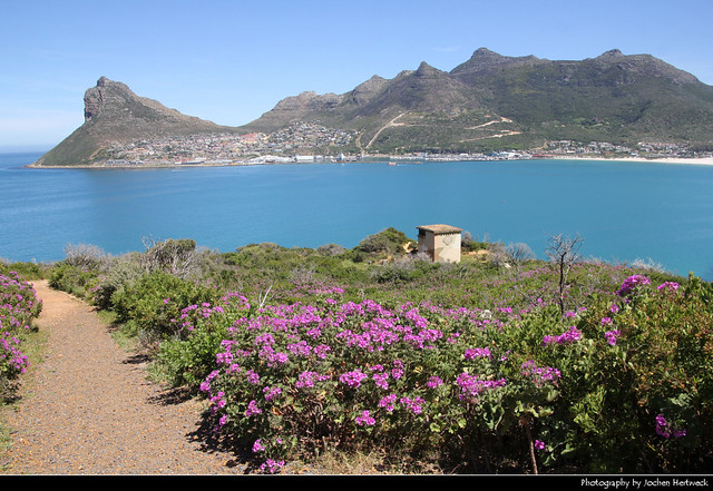 View from Chapmans Peak Drive across Hout Bay, South Africa