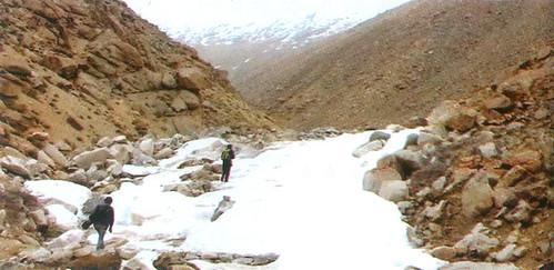 लद्दाख में खेती की कल्पना को साकार करते जलमार्ग जो जिंग (एक प्रकार के तालाब) में जल संचयन करते हैं।