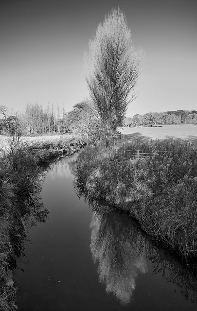 Cod Beck, reflections in, Canon EOS-1DS MARK II, Canon EF 17-40mm f/4L USM