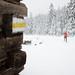 <p><a href=&quot;http://www.flickr.com/people/biegowkipodtatrami/&quot;>Biegówki pod Tatrami</a> posted a photo:</p>&#xA;&#xA;<p><a href=&quot;http://www.flickr.com/photos/biegowkipodtatrami/37929926375/&quot; title=&quot;DSC_8851&quot;><img src=&quot;http://farm5.staticflickr.com/4576/37929926375_29627f0631_m.jpg&quot; width=&quot;240&quot; height=&quot;159&quot; alt=&quot;DSC_8851&quot; /></a></p>&#xA;&#xA;