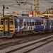 Class 158 158905 Northern_C060182