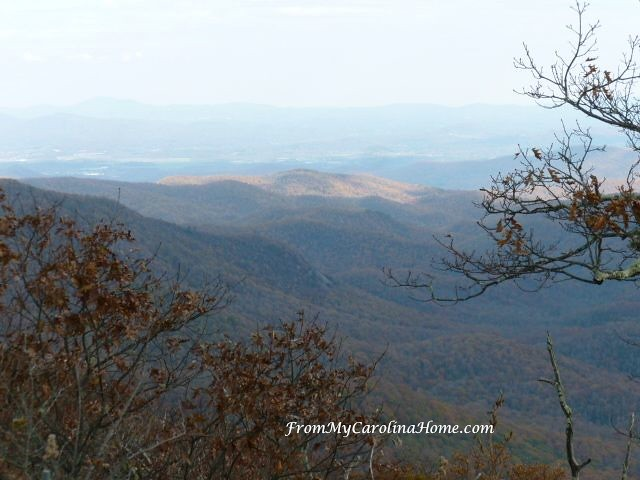 Frying Pan Ranger Station Hike at From My Carolina Home