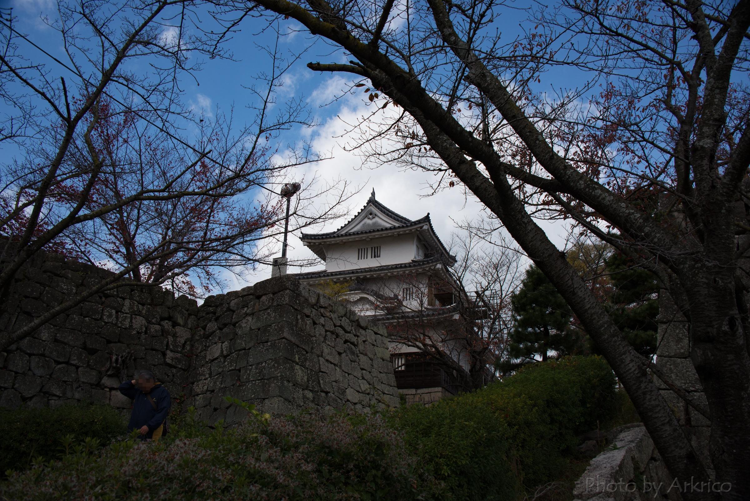 The peek of Marugame Castle